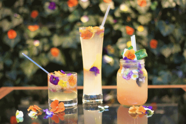 украшение коктейлей